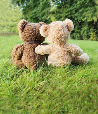 2 bears in love sitting in the grass enjoying nature