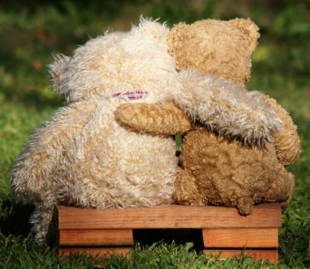 2 bears sitting on a bench enjoying nature