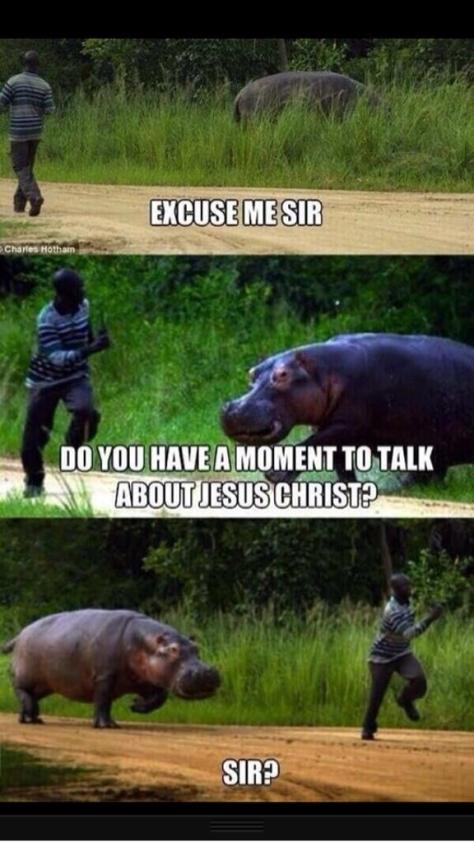 Jesus Rhino