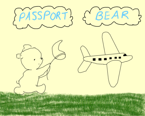 Passport Bear 1st